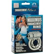 Maximus Enhancement Ring - 5 Beads
