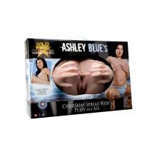Ashley Blue Cyberskin Pussy/ass