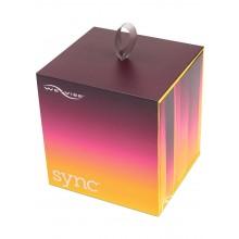Sync Couples Vibrator Purple